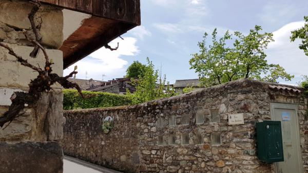 La terrasse entre les deux arbres