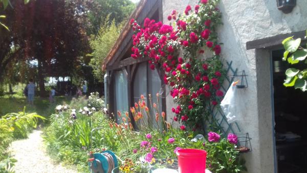 Magnifique  jardin