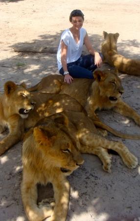 Promenade unique avec de lions!!!