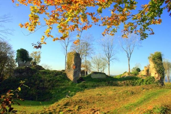 Chateau de Montfort sur Risle , vue depuis la basse cour