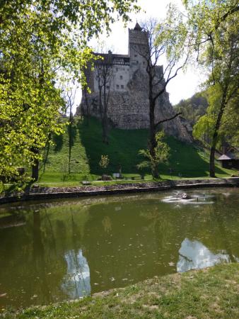 Le château de Bran vu de l'étang.