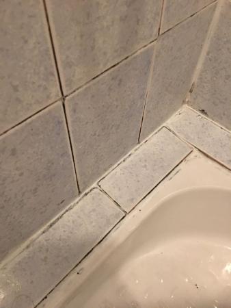 Salle de bain dégoûtante