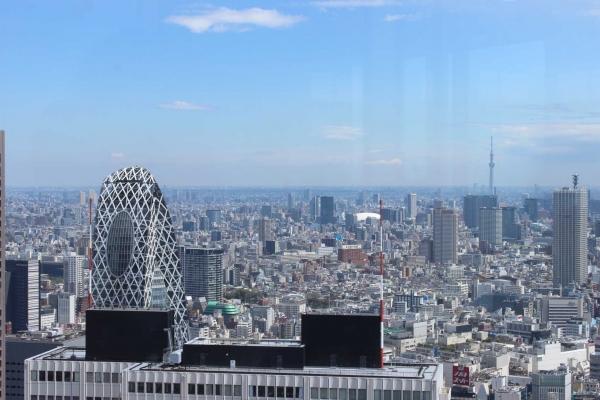 Panorama de la tour