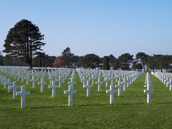 Dans le cimetière de Colleville