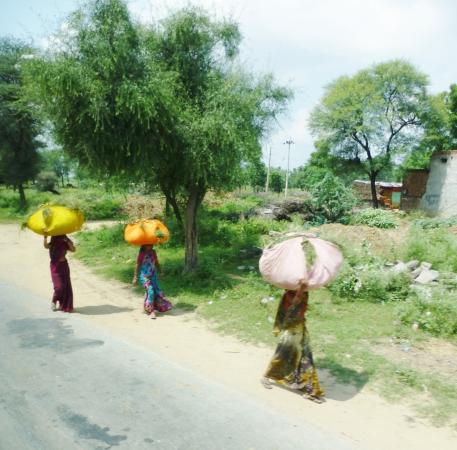 Femmes portant du bois