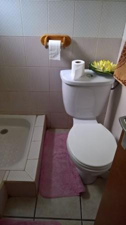 Salle d'eau, partie douche et toilettes