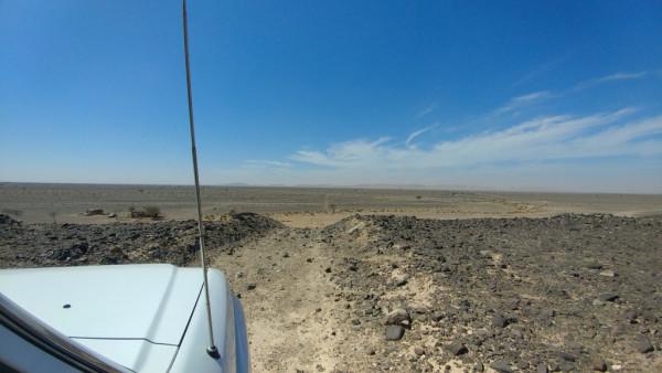 Dans la plaine derrière Fossil Rock