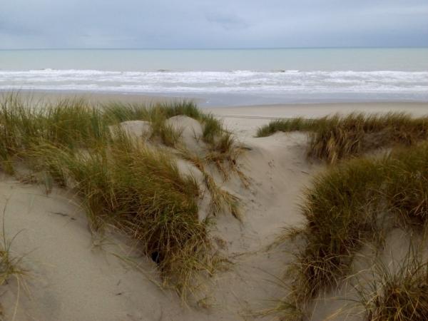 Les dunes et la mer