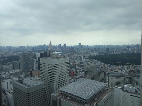 Vue de Tokyo depuis l'observatoire sud