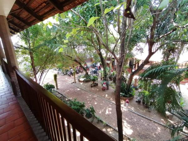 Balcon donnant sur des arbres