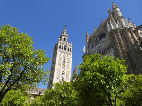 la tour de la Giralda