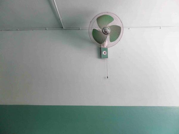 2 ventilateurs au plafond