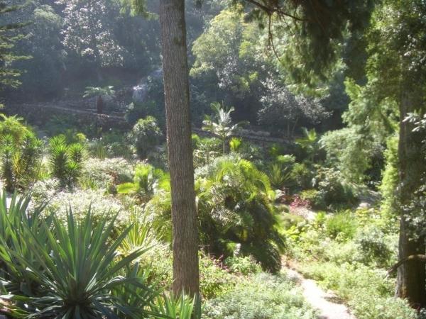 un jardin fabuleux