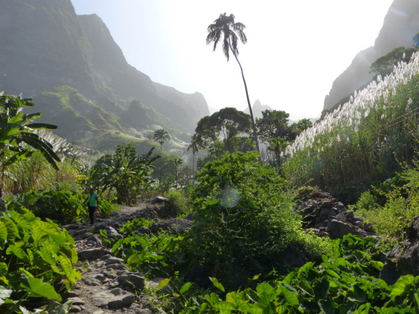 Ile de Santo Antao: La Ribeira da Torre