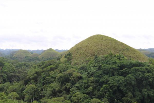 Chocolates Hill