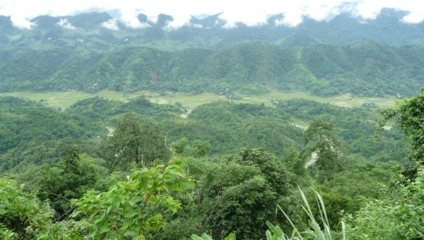 La réserve de Puluong
