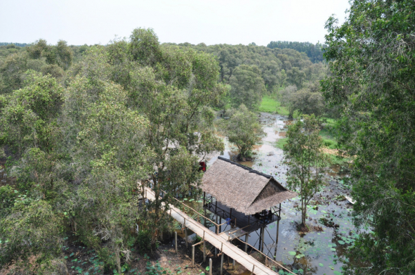 réserve de TRAN SU au Sud Vietnam