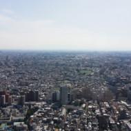 une vue possible de la tour sud
