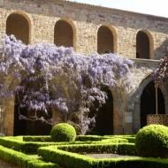 le cloître de l'abbaye et sa belle glycine