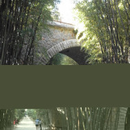 l'entrée de la bambouseraie