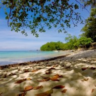 winnifried beach