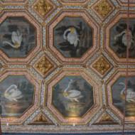 Le plafond de la salle des cygnes