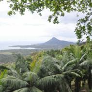 Le Restaurant avec vue sur l'île aux Bénitiers