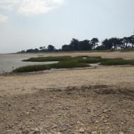 Vue de la plage à marée basse