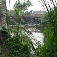 Un étang classé à l'unesco