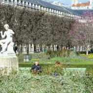un très joli jardin