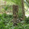 Un tiki dans la jungle de secret island