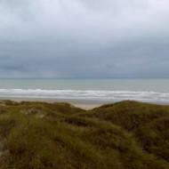 Le haut des dunes