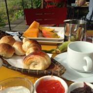 le petit dejeuner avec notre copain le lezard