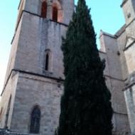 Tour de la cathédrale