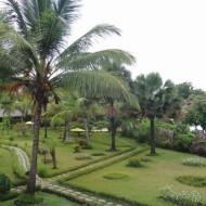 Le jardin vu depuis la chambre