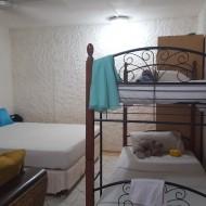 Studio pour 4 personnes avec un lit de 180 et 1 lit superposé pour les enfants. Une cuisine et une salle de bain attenante plus une belle terrasse avec cuisine extérieure.