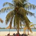 Déjeuner sous les palmier à la Plage D'Or!