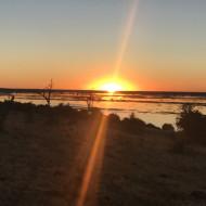 Rivière Chobe - Bostwana