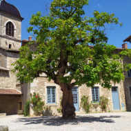 Pérouges, jolie petite cité médiévale