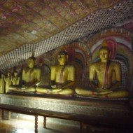 alignement de bouddhas