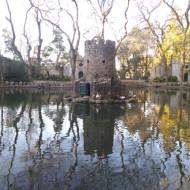 Lac du parc du palais