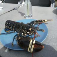 un homard pêché près d'une île voisine, dans notre assette à Granville