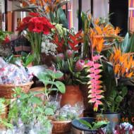 Stand de fleurs