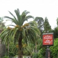 si vous avez du temps vous pouvez tenter le jardin botanique pour vous mettre au vert...