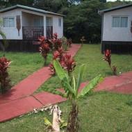 Jardin et bungalow