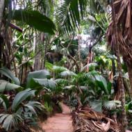 La Vallée de mai